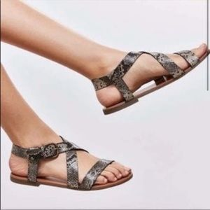 Urban outfitters snake print sandals NWT